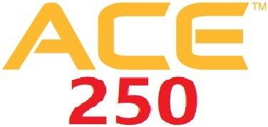 garrett ace 250 отзывы и обзор